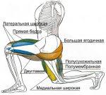 Что качают выпады – Выпады какие мышцы работают — Всё о спортивных тренировках