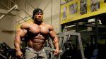 Базовые упражнения на грудные мышцы для мужчин в тренажерном зале – упражнения и программа тренировки груди