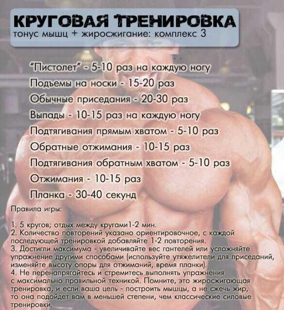 программа тренировок для сжигания жира для мужчин естественными способами